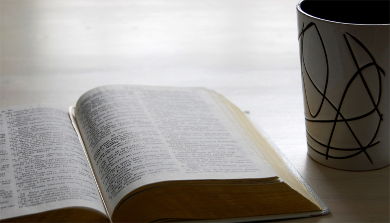 Raamattu ja raamatuntutkimus